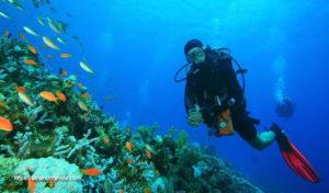 How To Scuba Dive, Scuba Education, Diving Strategies