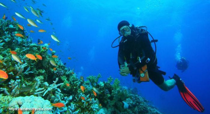 How To Scuba Dive, Scuba Education, Diving Strategies
